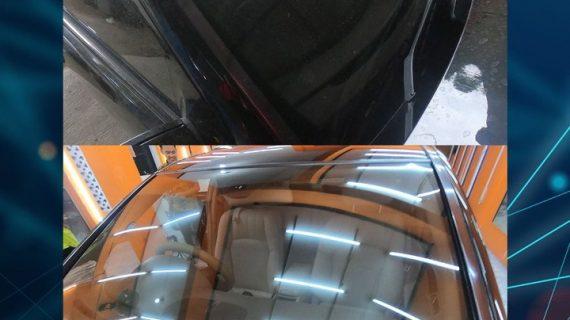Jamur Kaca Mobil